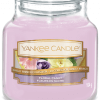 Yankee Candle Collection Sunday Brunch: Fleurs de Sucre / Floral Candy - Petite Jarre